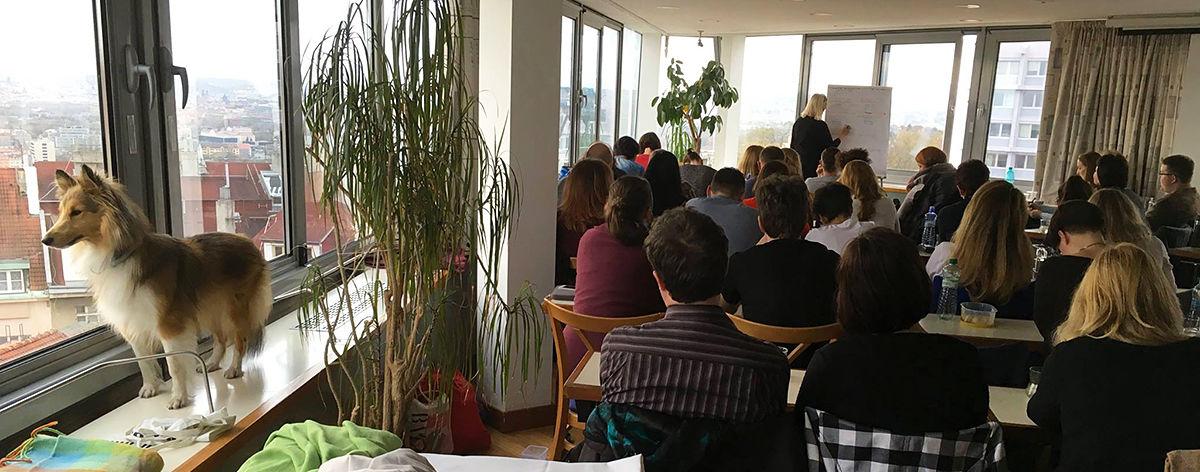 Táňa Havlíčková OCTO CODES seminář