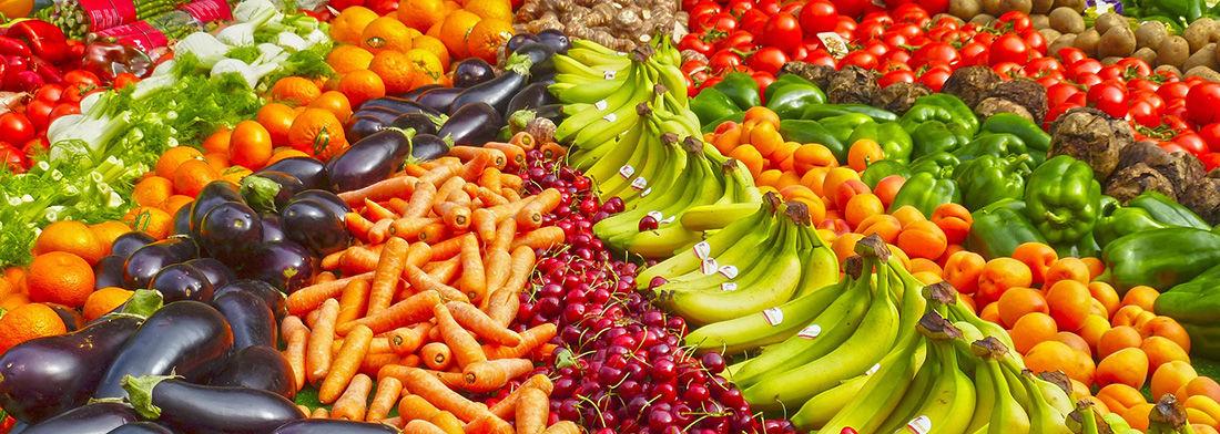 Táňa Havlíčková OCTO-GRAM stravování
